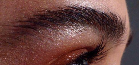 eyeblow2